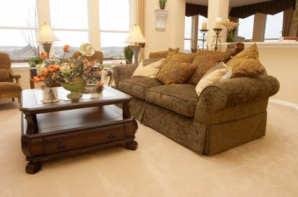 Best Carpet Upholstery Cleaning In Lincoln Dry Advantage