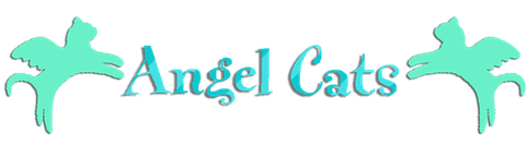 Angel Cats Clone2