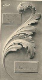 Acanthus Leaf