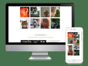 Animal Image Gallery