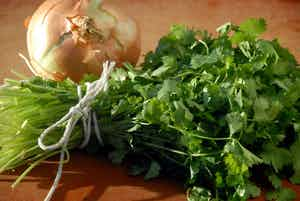 Cilantro & Onion Infused Olive Oil