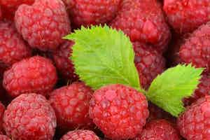 Dark Raspberry Balsamic Vinegar