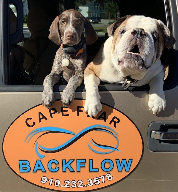cape fear backflow dogs in truck