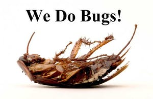 Eliminate Bugs and Other Pests