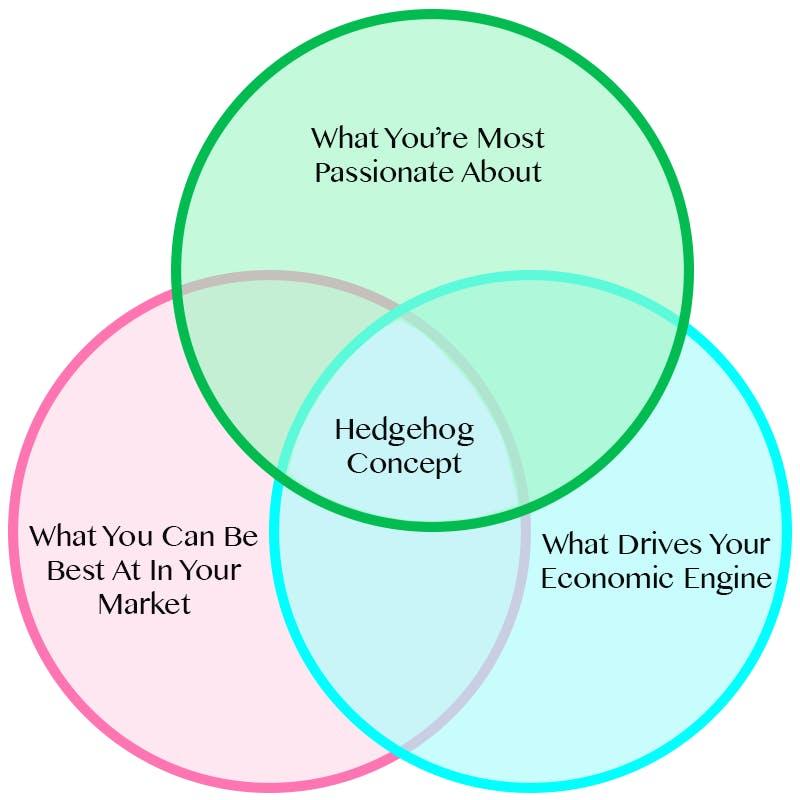 Hedgehog concept for digital business technology