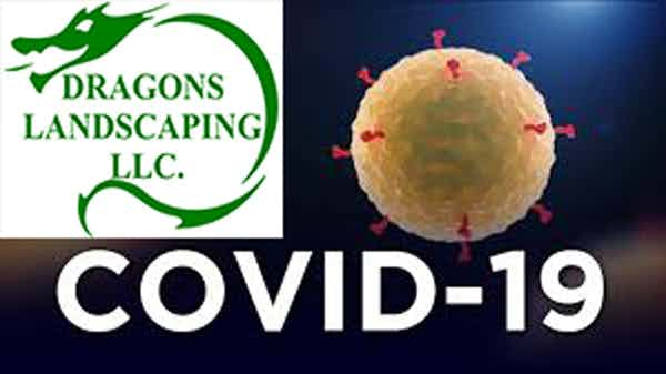 Dragons Landscaping's Statement on COVID-19