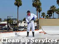 Our Pigeon Clean Up Services
