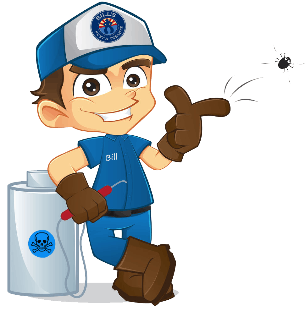 Termite Treatment Phoenix Az | Arizona Termite Control