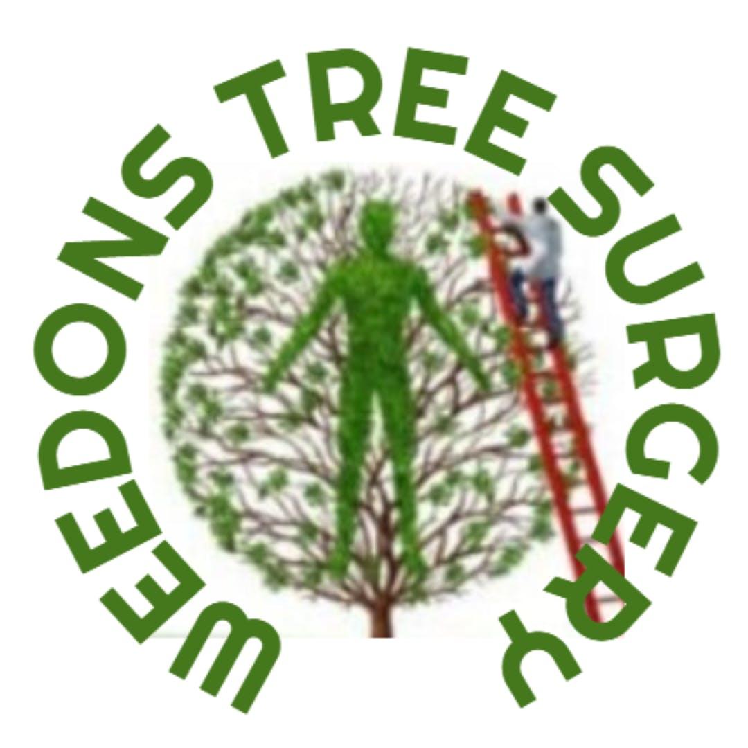 Tree Surgeons Nottingham