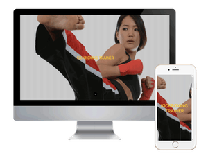 Kickboxing Trainer